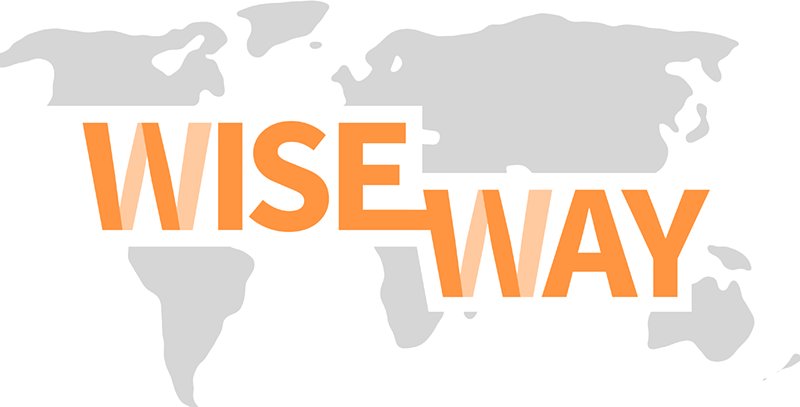 Wise Way. Findwise Sustainability Agenda